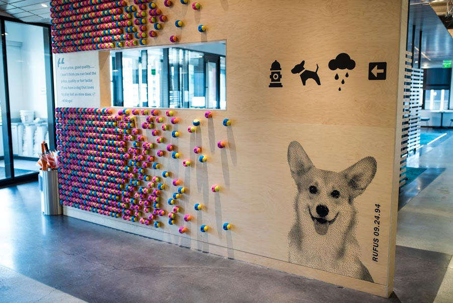 dog-friendly offices photography project by jamie piper