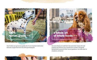 The Honest Kitchen Tearsheets- Commercial Pet Photography