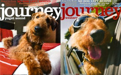 Cowbelly shoots AAA Journey Magazine 'No Dog Left Behind' article- Editorial Pet Photography