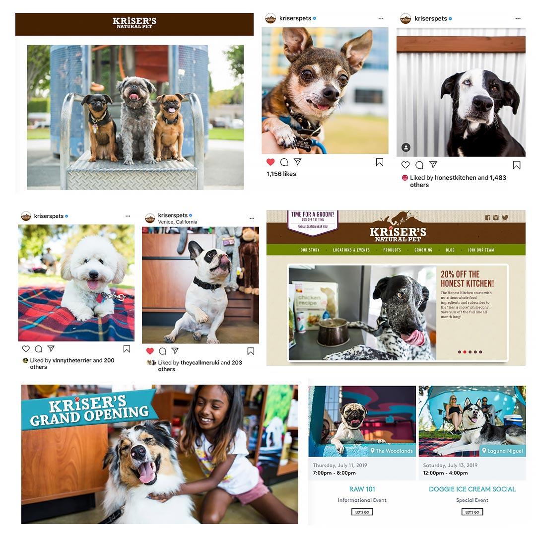commercial pet photography for kriser\