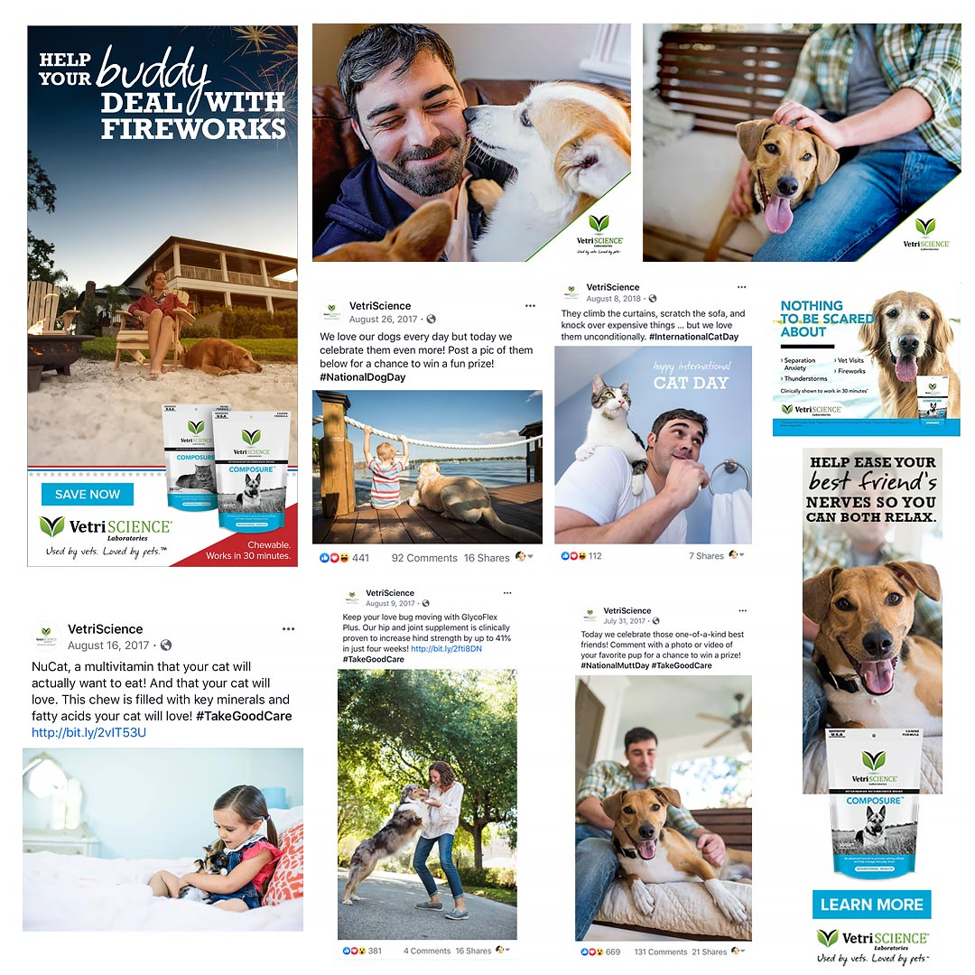commercial animal and people photography for vetriscience