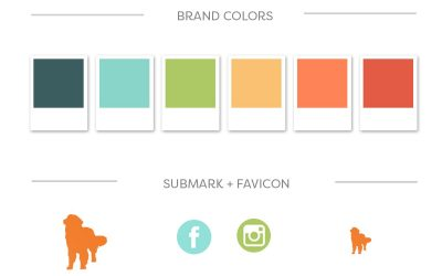Why we require Brand Guides in advance of every web design project